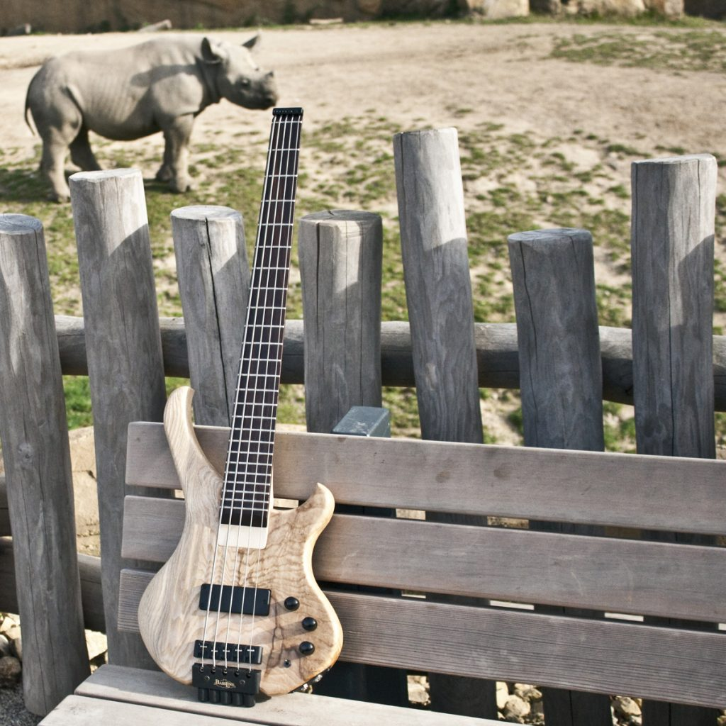 BassLine Bustiny 5 custom shortscale bass made in germany